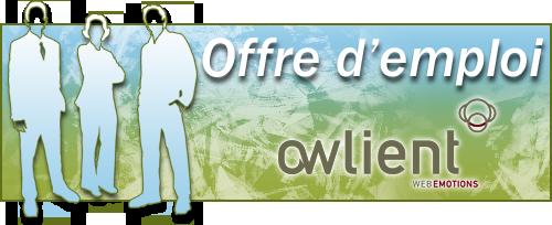 Offre-d'emploi-owlient